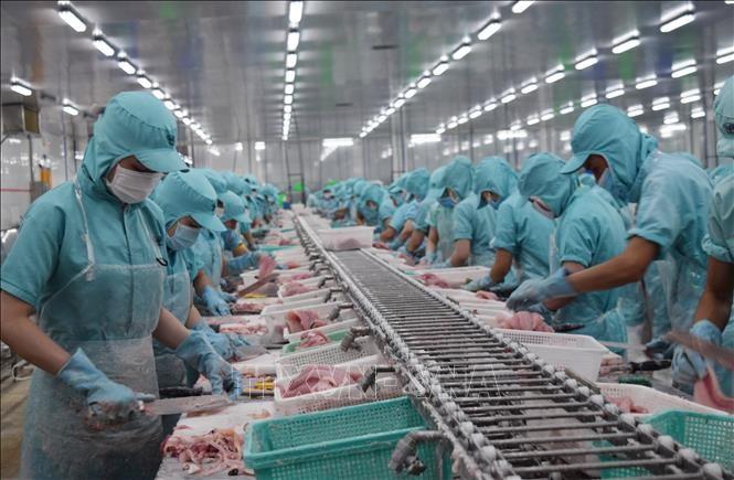 Peru phê chuẩn Hiệp định CPTPP – cơ hội thúc đẩy xuất khẩu của Việt Nam