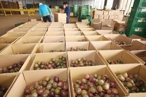 Doanh nghiệp đưa nông sản Việt vào thị trường Anh qua Chợ Birmingham