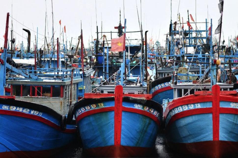 Doanh số thủy sản của Việt Nam sang EU tăng 20% trong nửa đầu năm 2021